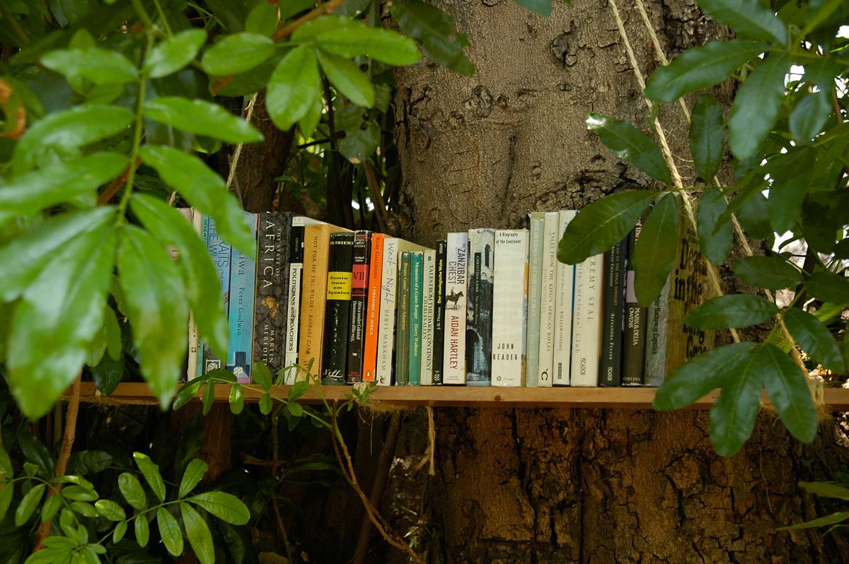 Buecherregal Bücher