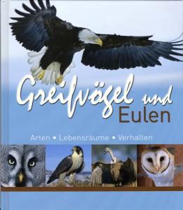 TiereGreifvögel-262x300 Greifvögel und Eulen