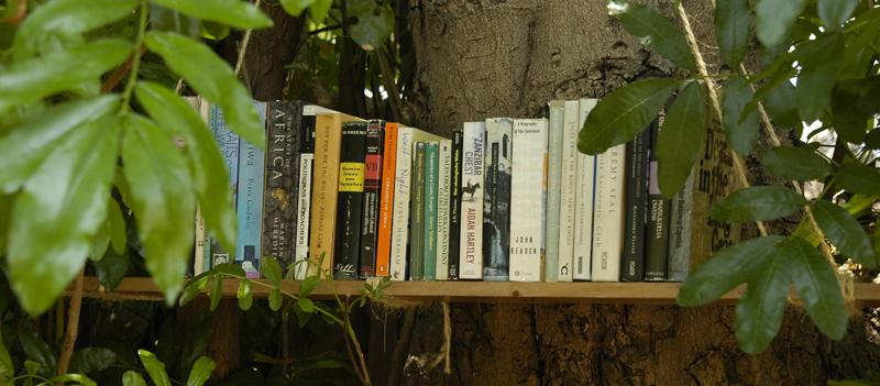 buecher-knauer-und-viering Bücher