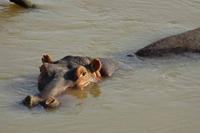 knauer-viering-afrika-2a Fotos aus Afrika