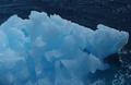 knauer-viering-antarktis-7a Fotos aus der Antarktis