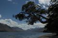 knauer-viering-neuseeland-15a Fotos aus Neuseeland