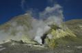 knauer-viering-neuseeland-17a Fotos aus Neuseeland