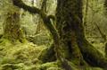knauer-viering-neuseeland-19a Fotos aus Neuseeland