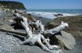 knauer-viering-neuseeland-7a Fotos aus Neuseeland