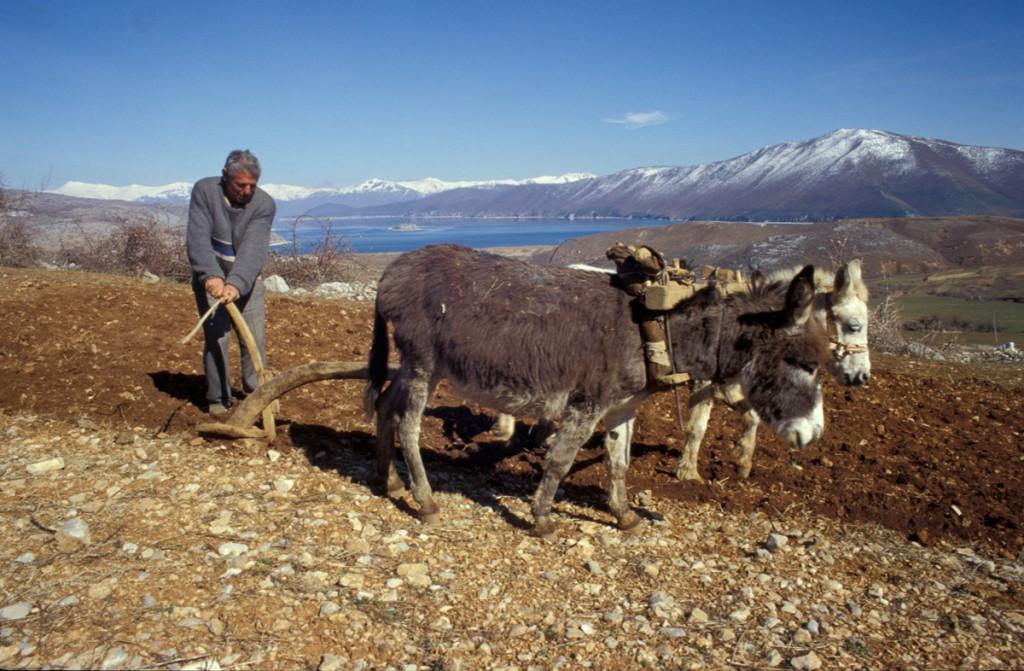 BauerAlbanien-1024x671 Albanien