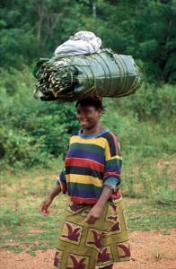 326-58-196x300 Fotos aus der Zentralafrikanischen Republik