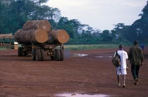408-33-300x197 Kamerun