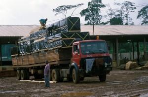408-37-300x197 Kamerun