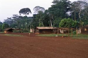 408-45-300x198 Kamerun