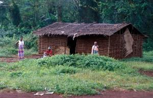 408-49-300x194 Kamerun