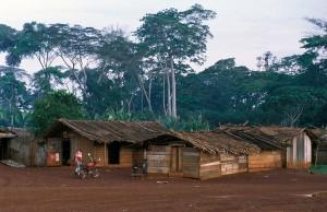 408-50-300x194 Kamerun