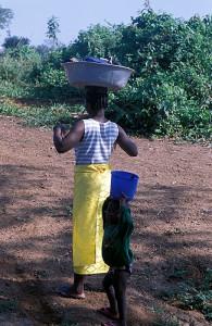 410-117-195x300 Kamerun