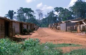 410-128-300x194 Kamerun