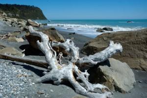 NZ07-06-NZ-0952-300x200 Landschaften