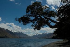 NZ15-21_DSC0093-300x200 Landschaften