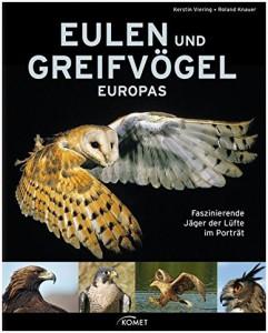 Eulen4-241x300 Eulen und Greifvögel Europas